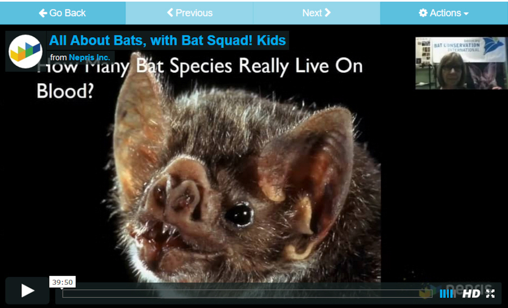 Screen shot from video archive on Nepris of an interactive session on bats.