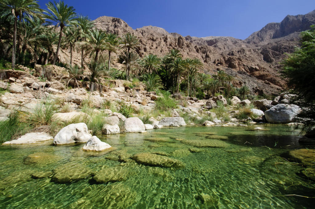 Oasis in the Omani desert