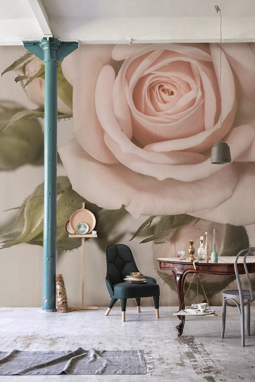 Prink Rose Wallpaper Mural