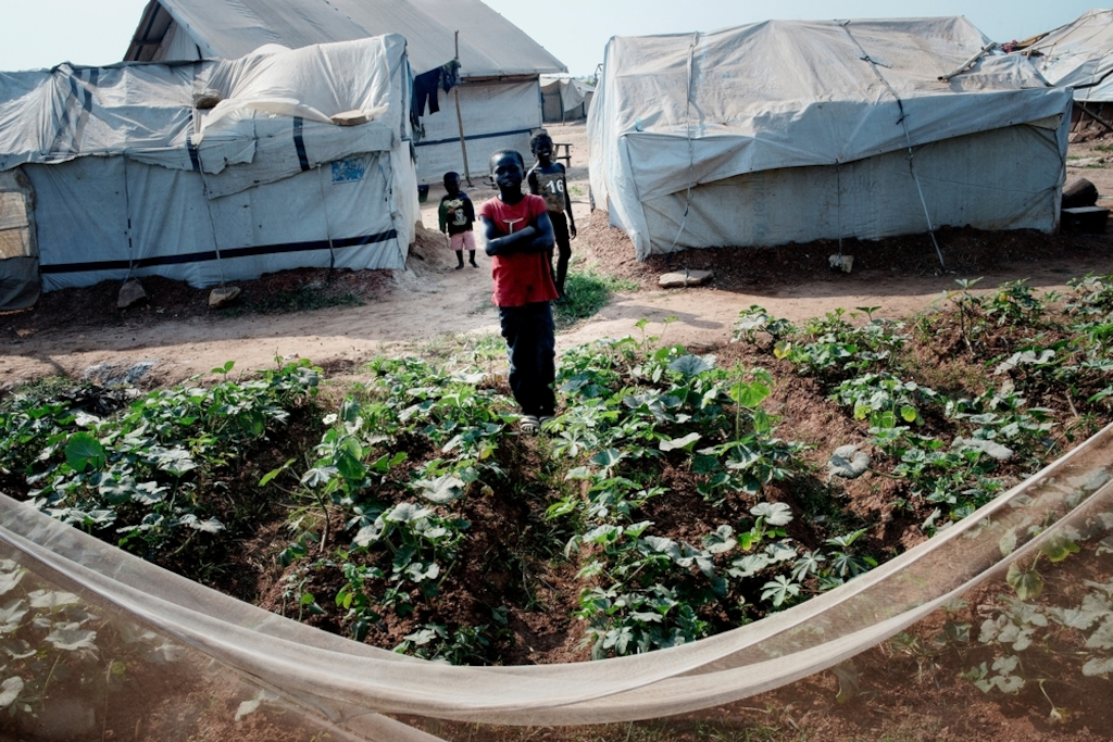 MSF159625<br/>General view of the a displaced persons camp in M&#039;Poko, Bangui.