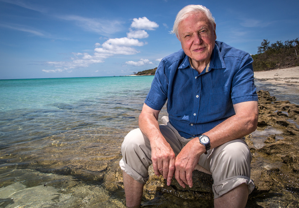 David Attenborough's Great Barrier Reef