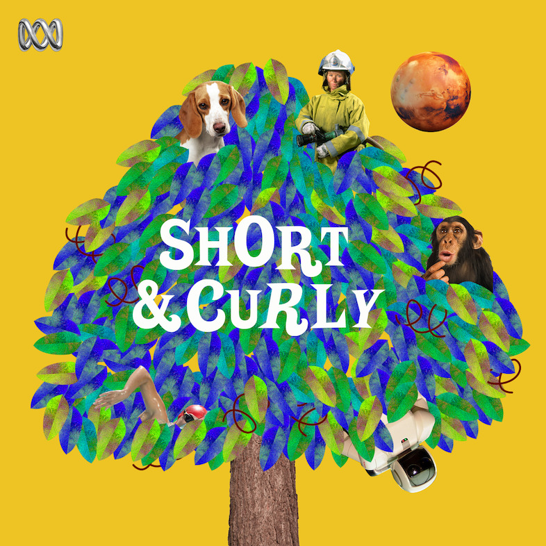 Image result for short and curly podcast
