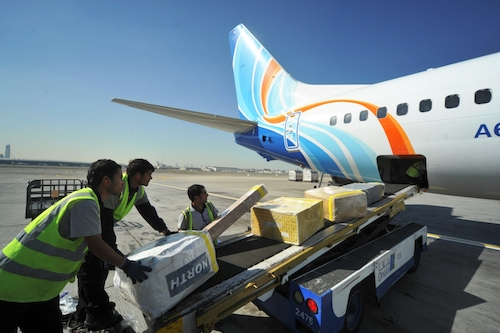 Preview: flydubai Cargo continues to deliver