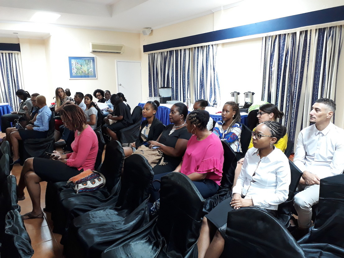 15 professionnels de martinique en immersion saint lucie for Chambre de commerce martinique