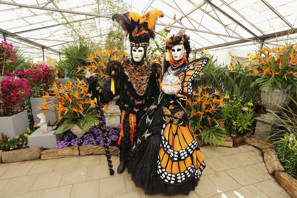 Floralia Brussels - from 6 April to 6 May 2016