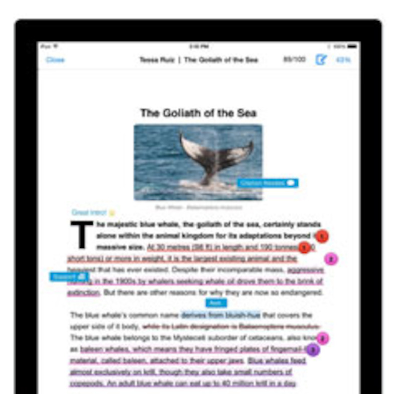 Turnitin Feedback Studio (iPad view) Pinterest
