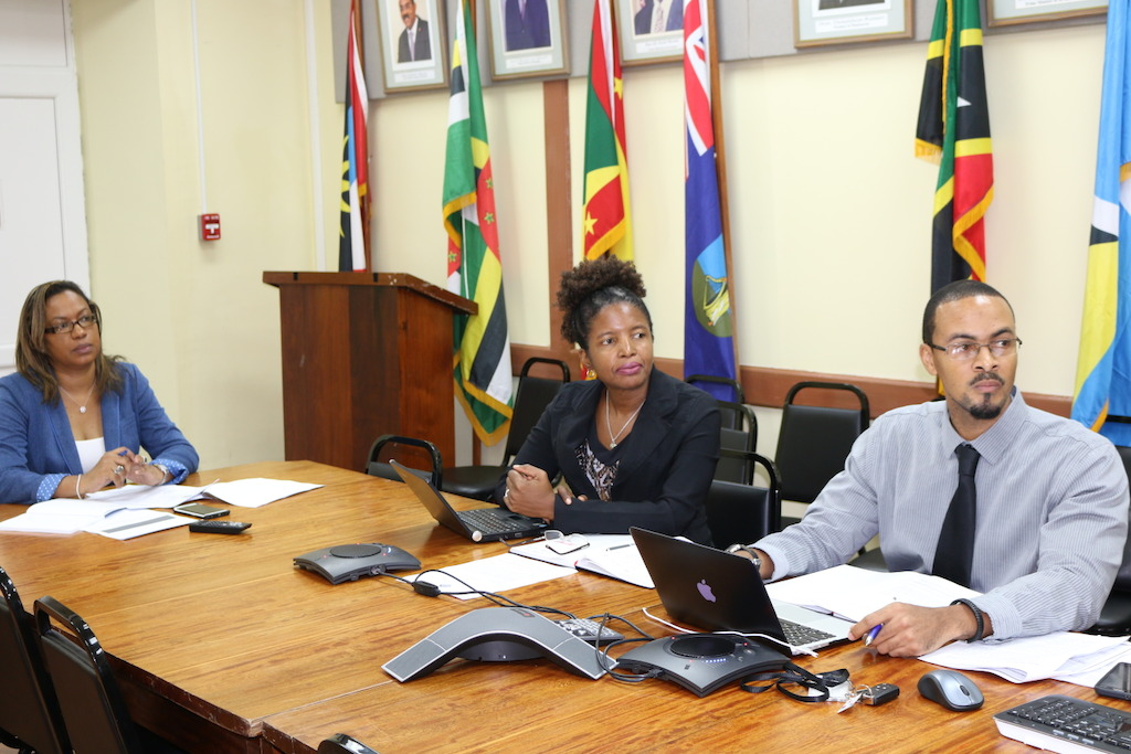 OECS Trade Policy Officials at the Meeting