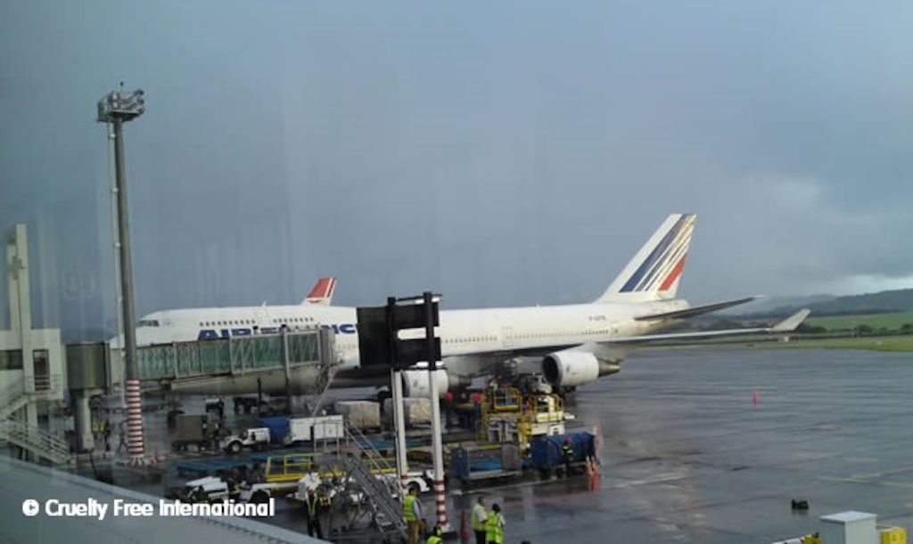 CFI  Copyright Air France