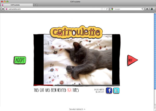 Catroulette 2