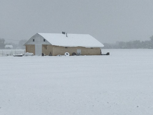 Preview: PHOTOS AND VIDEO: Rocky Ford Growers Association farmers survey snow-covered fields